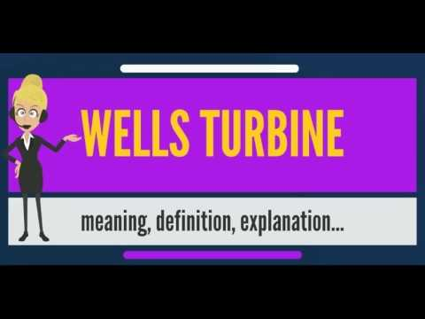 What is WELLS TURBINE? What does WELLS TURBINE mean? WELLS TURBINE meaning & definition