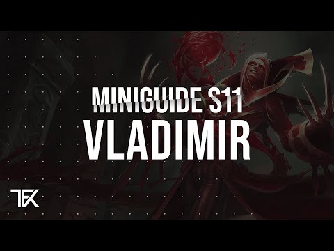 Vladimir Miniguide S11 german   TFK