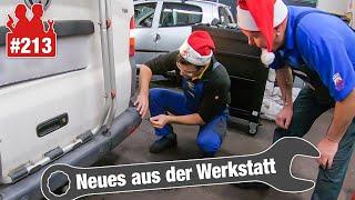 VW-Bus mit PDC-Problemen & Horror-Bremsscheiben im Golf | Autodocs-Weihnachtskekse (!) von Patrick 🙏
