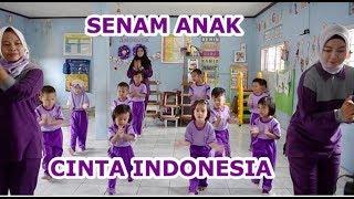Download Mp3 Senam Cinta Indonesia