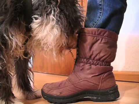 mamibis-servicehund-utemoeckel