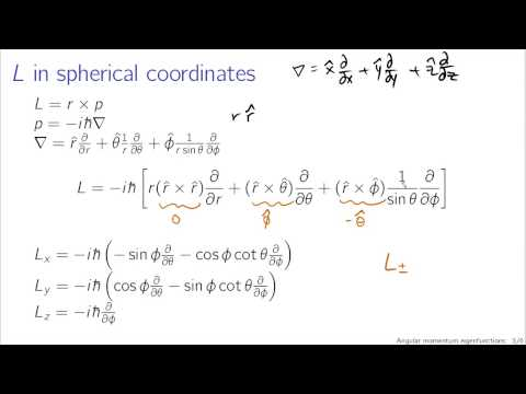 Angular momentum eigenfunctions