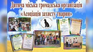 Ассоциация Защиты Животных | Помощь животным, конкурсы, акции