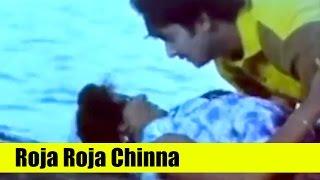 Tamil Songs - Roja Roja Chinna -  Varun Raj, Roopa Sri - Gangai Karai Paattu [ 1995 ]