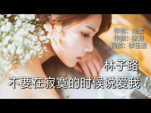 《不要在寂寞的时候说爱我》 演唱:林子路