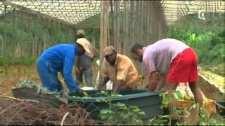 Reportage sur l'île de Mayotte