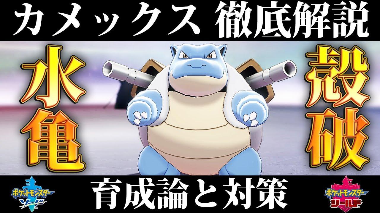 盾 カメックス 剣 ポケモン