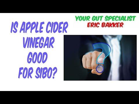 is-apple-cider-vinegar-good-for-sibo?