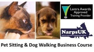 Www.narpsuk.co.uk Pet Sitting And Dog Walking Business Course