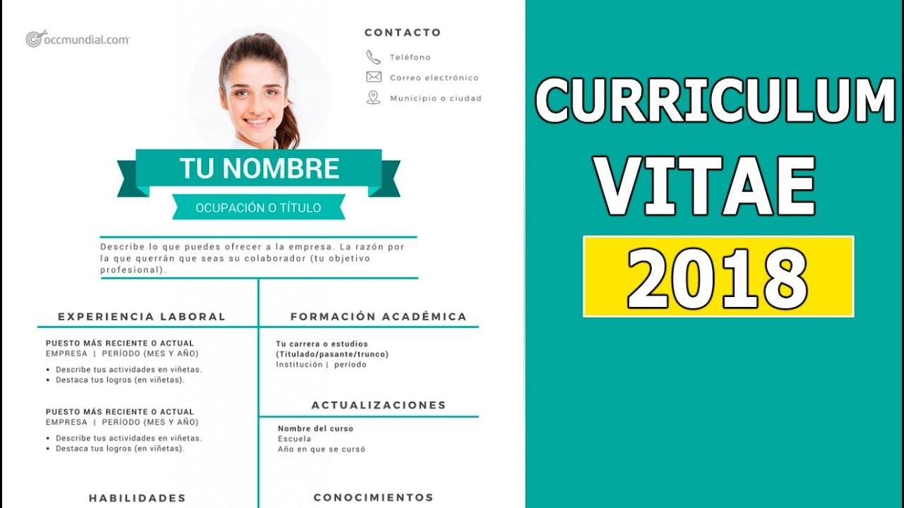 cv ejemplos argentina