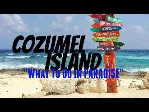 INCREDIBLE Day on COZUMEL ISLAND | What To Do in COZUMEL
