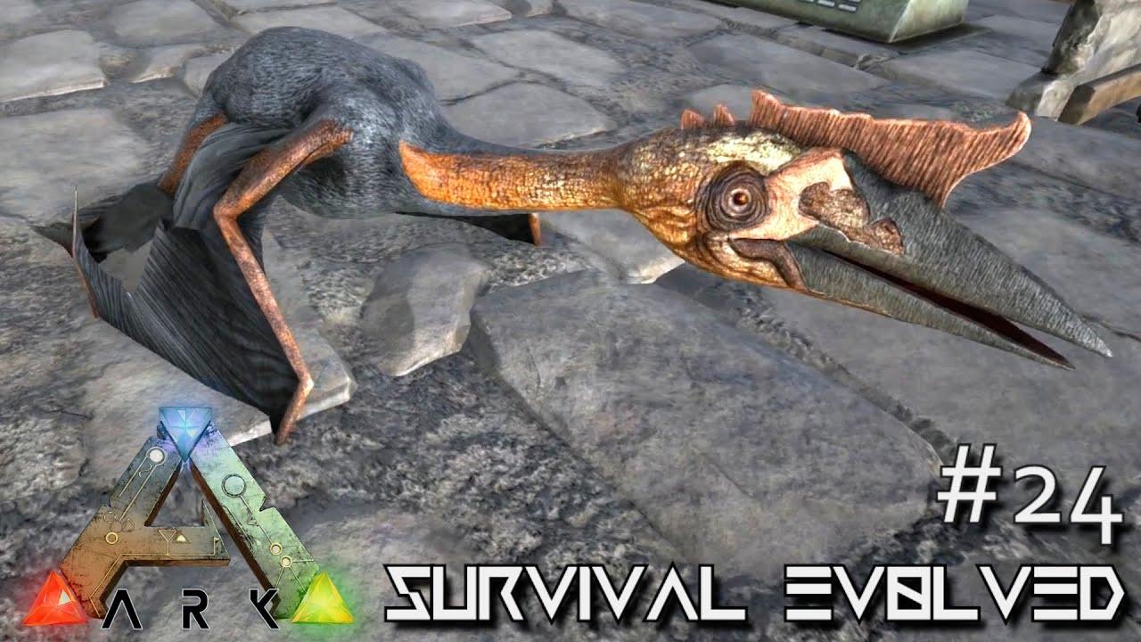 how to start a server on ark survival evolved