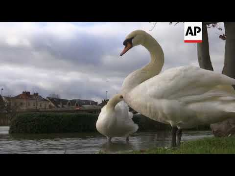 Floodwaters threaten towns downstream along the Seine