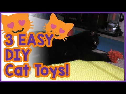 3-easy-diy-toys-for-cats!-simple-homemade-toy-ideas-to-keep-your-cat-entertained!