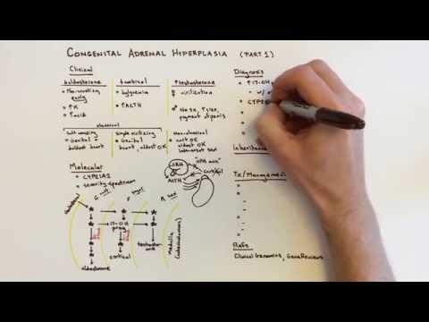 Congenital Adrenal Hyperplasia (CAH) - 1 Of 2