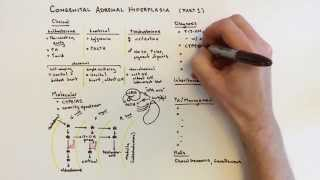 Congenital Adrenal Hyperplasia (CAH) - 1 of 2