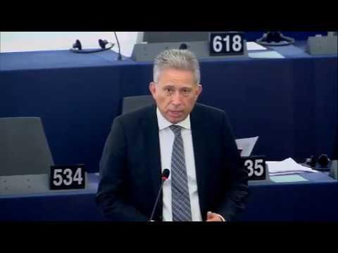 Chrysogonos Plenary 14.6.2017