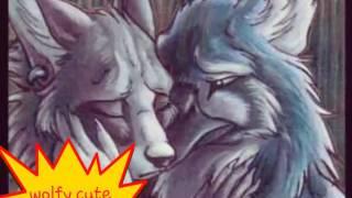Furry sad...  :(