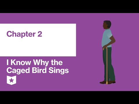 i-know-why-the-caged-bird-sings-by-maya-angelou-|-chapter-2
