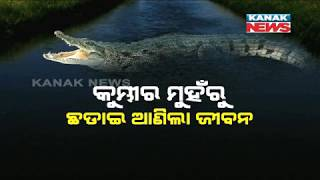 12-Yrs-Old Boy Shows Bravery, Saves Uncle From Crocodile  In Kendrapara