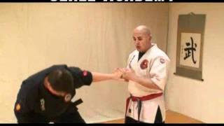 Dustin Seale's Kyusho Combatives - Principles of Tuite #2
