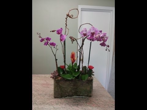 Sausalito Florist - Royal Fleur - Same Day Flower Delivery