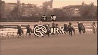 中央競馬ワイド中継 fin. (仮) thumbnail