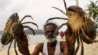 KING of CRAB !!! Full Crab Fry Prepared by my daddy Arumugam / Village food factory