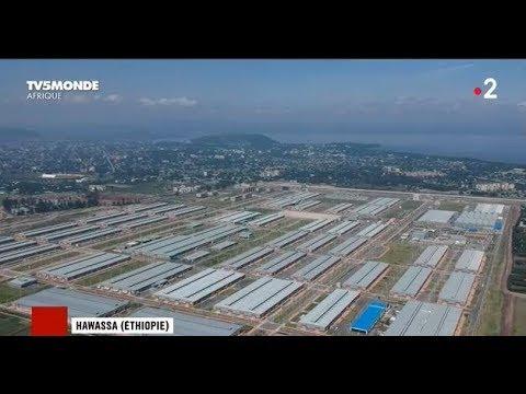 L'Éthiopie, la nouvelle usine de la Chine en Afrique.