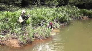 Sebarau Fishing