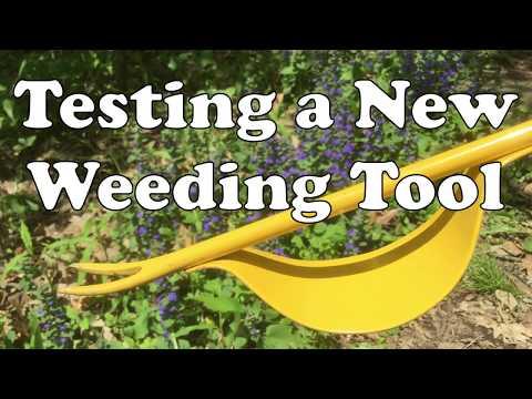 Testing A New Weeding Tool 🏵 Dandelion Puller ⛏ Grandpa's Weeder