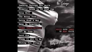the cringe hiding in plain sight album sampler