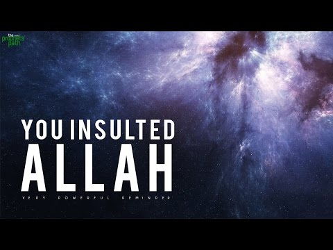 YOU INSULTED ALLAH!