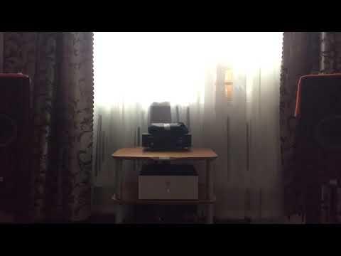 Audio Note& SW1X Special X
