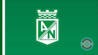 Baixar Música em homenagem ao Atlético Nacional COL ( SALSA )