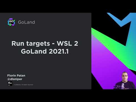 Compile and Run Go Code Using WSL 2 and GoLand