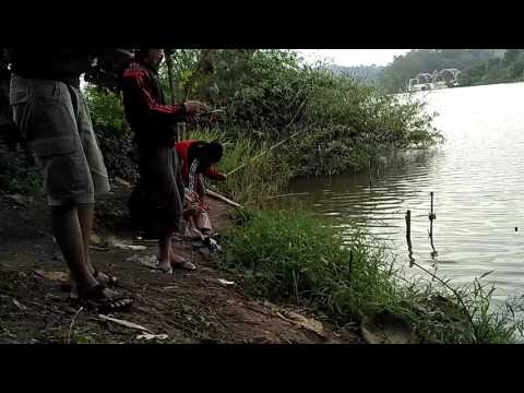 Net Fishing in Waduk Jati Barang Semarang