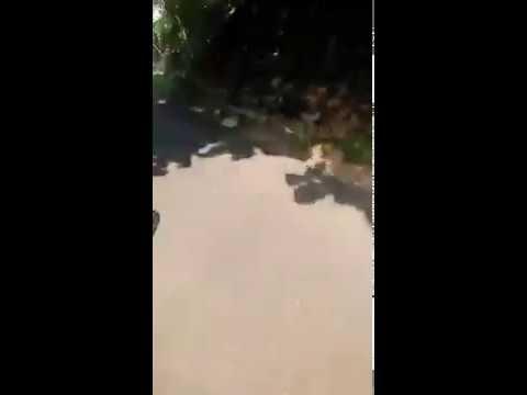 CB INDEPENDENT JOMBANG gas pantai pangi Blitar