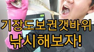 부산 유명호텔 뒤 도보권 갯바위 낚시!!!! #자급자족…