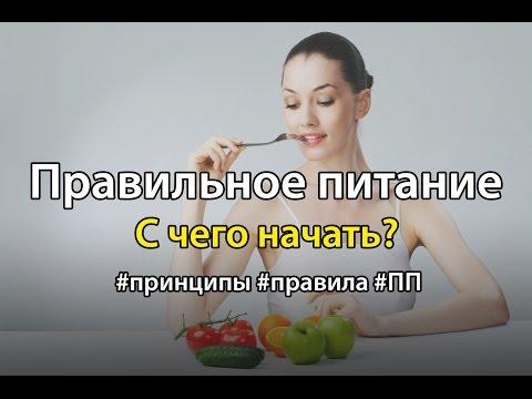 С чего начать правильное питание? Принципы и правила ПП