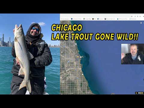 Chicago Lakefront LAKE TROUT Fishing! Lakers GONE WILD!!