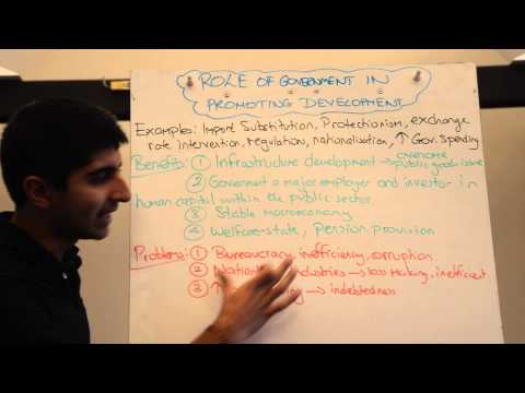 Y2/IB 24) Interventionist Policies and Development (Role of Government)