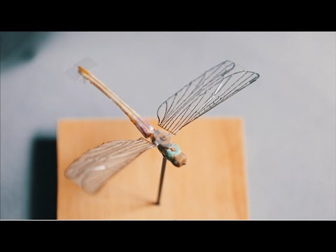 The Debrief: Behind the Artifact - Insectothopter