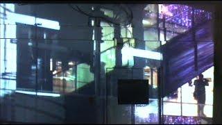 Koji Nakamura 『Lotus』MV