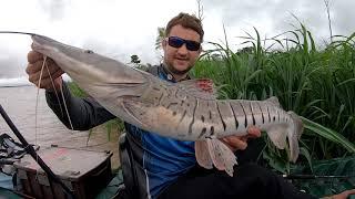 ISCA VIVA NA ESPERA, cada puxada uma surpresa! Pescaria.