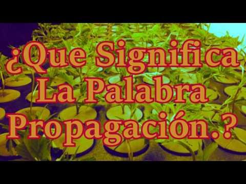 CÓMO TRANSMITIR LA SEÑAL DE UN MANDO A DISTANCIA POR CABLE COAXIAL from YouTube · Duration:  11 minutes 49 seconds