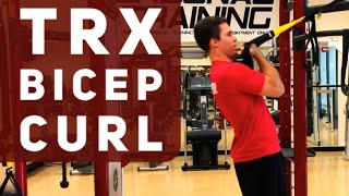 TRX BICEP CURL EXERCISE VIDEO