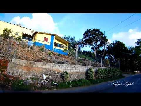 Driving through Ingleside Mandeville | Walinton Mosquera