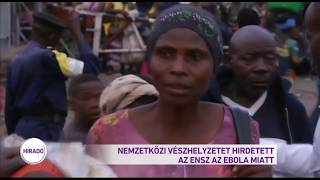 Nemzetközi vészhelyzetet hirdetett az ENSZ az ebola miatt