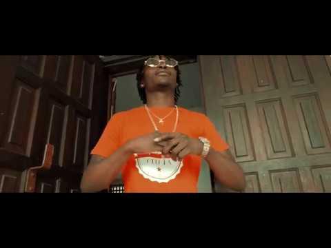 Youtube: Lion P: TWAP [%VIDEO]
